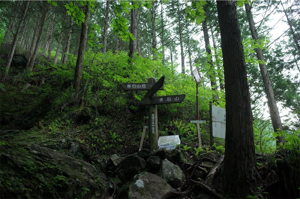 f:id:michi-trail:20190629185213j:image