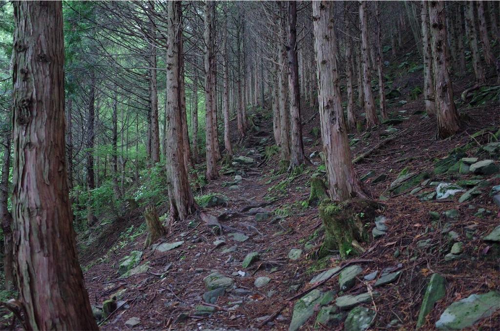 f:id:michi-trail:20190629185458j:image