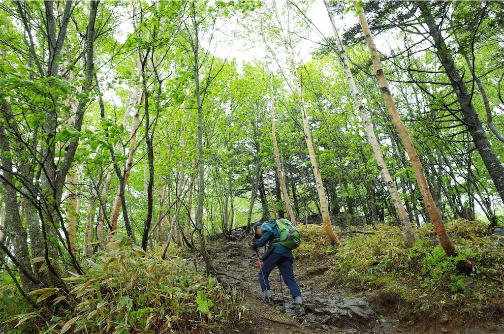 f:id:michi-trail:20190701211511j:image
