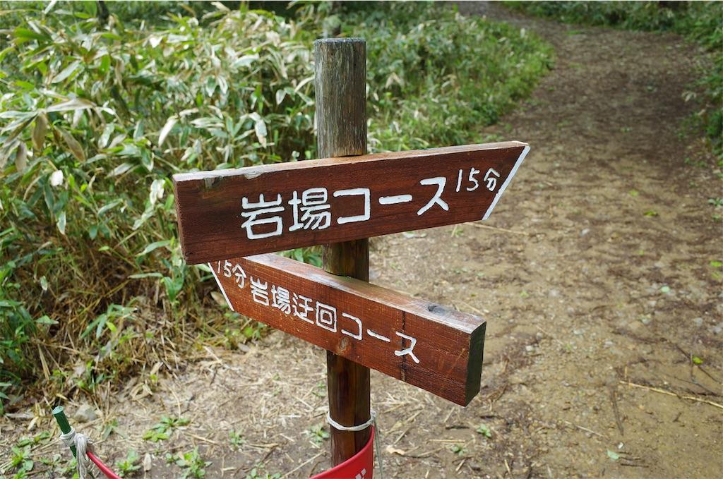 f:id:michi-trail:20190701211522j:image