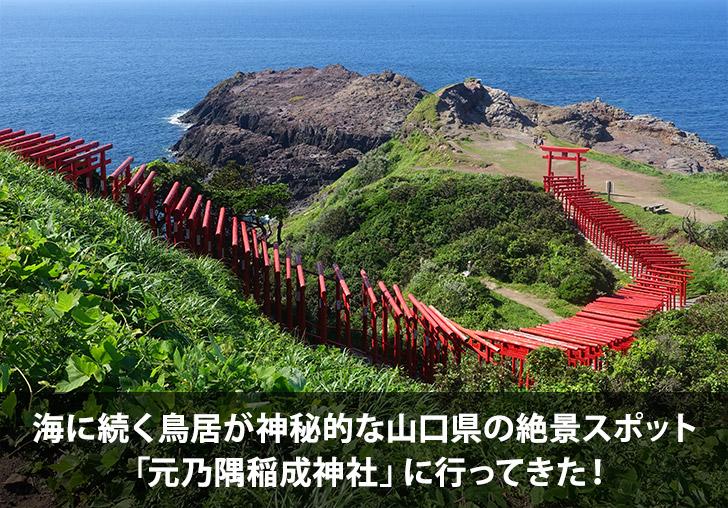 f:id:michihiro1224:20180302222414j:plain