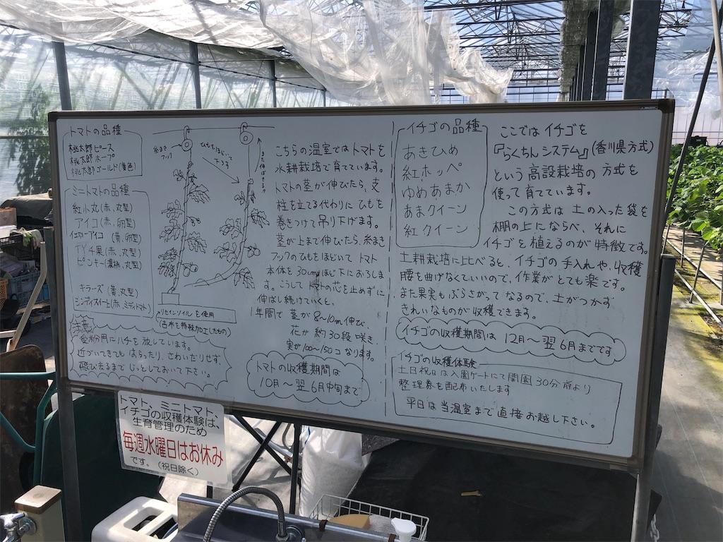 f:id:michihirohiromichi:20200211235501j:image