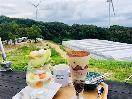 f:id:michihirohiromichi:20200730230423j:image