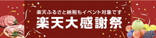 f:id:michihirohiromichi:20201223114405j:plain