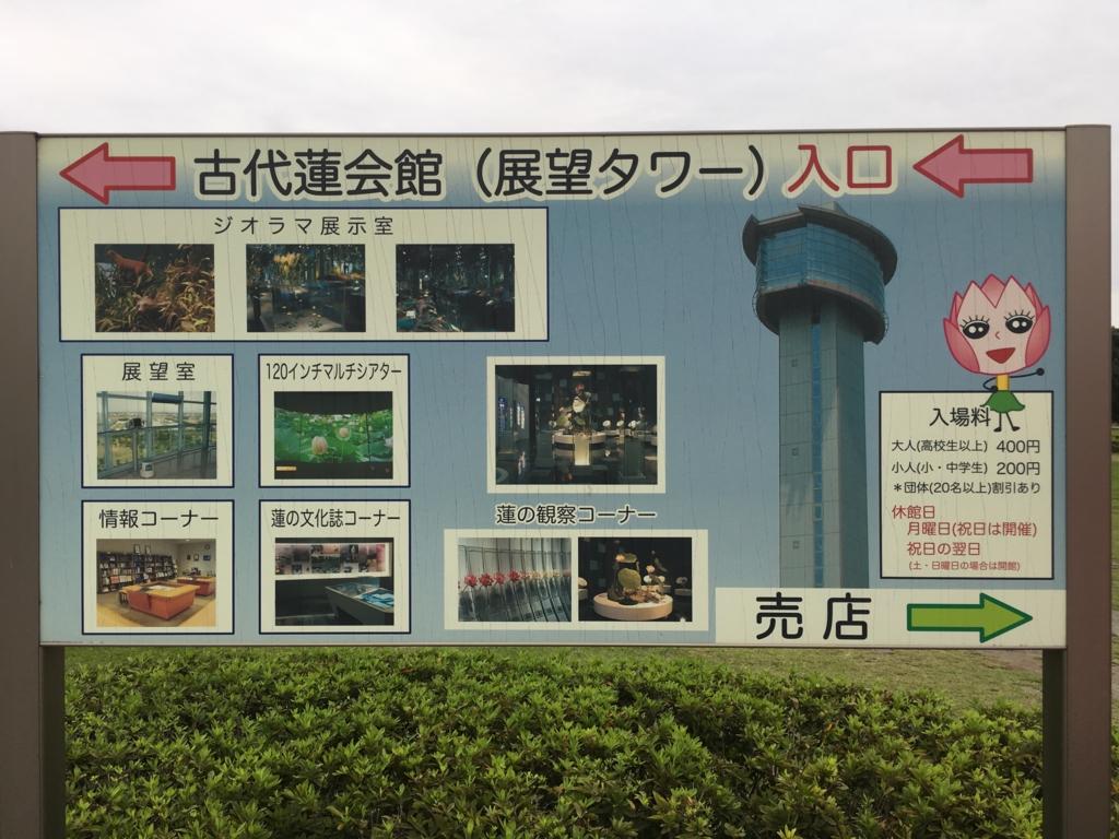 f:id:michsuzuki:20161010154453j:plain