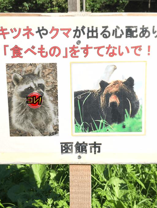 f:id:michsuzuki:20180207125614p:plain