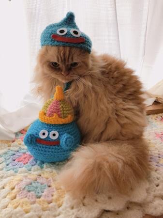キングスライムとネコ