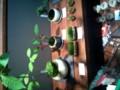 [twitter] アキバで盆栽とはw