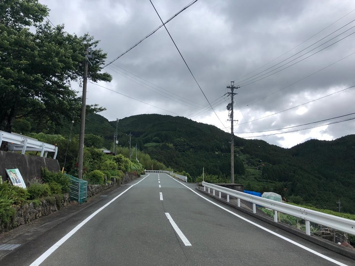 f:id:mick_kamihara:20190616081825j:plain