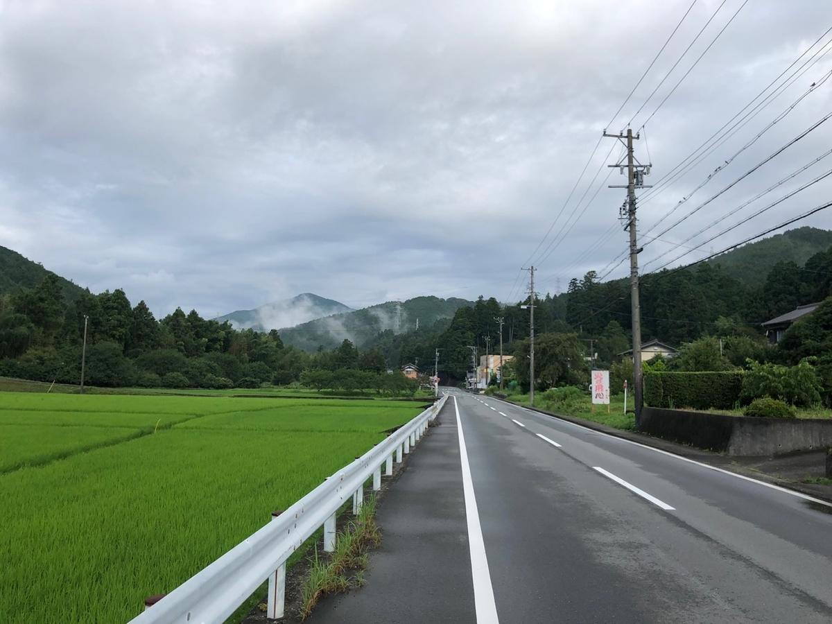 f:id:mick_kamihara:20190726064911j:plain
