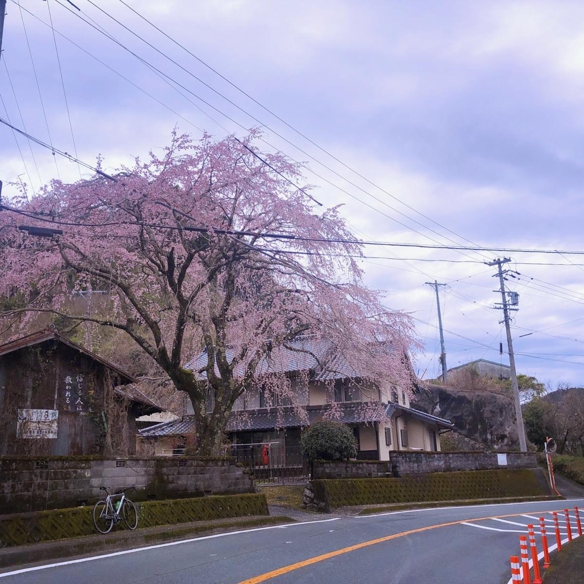 f:id:mick_kamihara:20200328103707j:plain