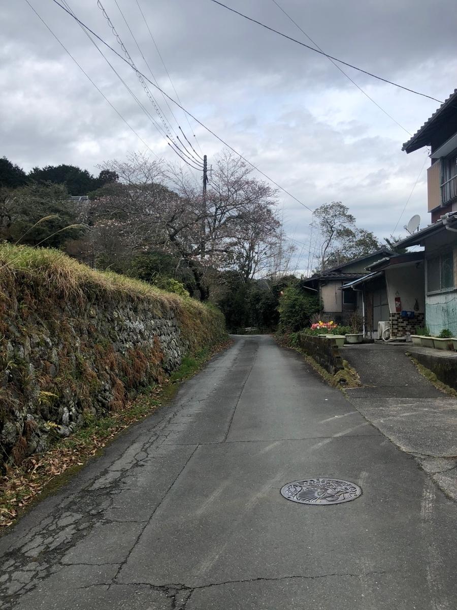 f:id:mick_kamihara:20200328103947j:plain