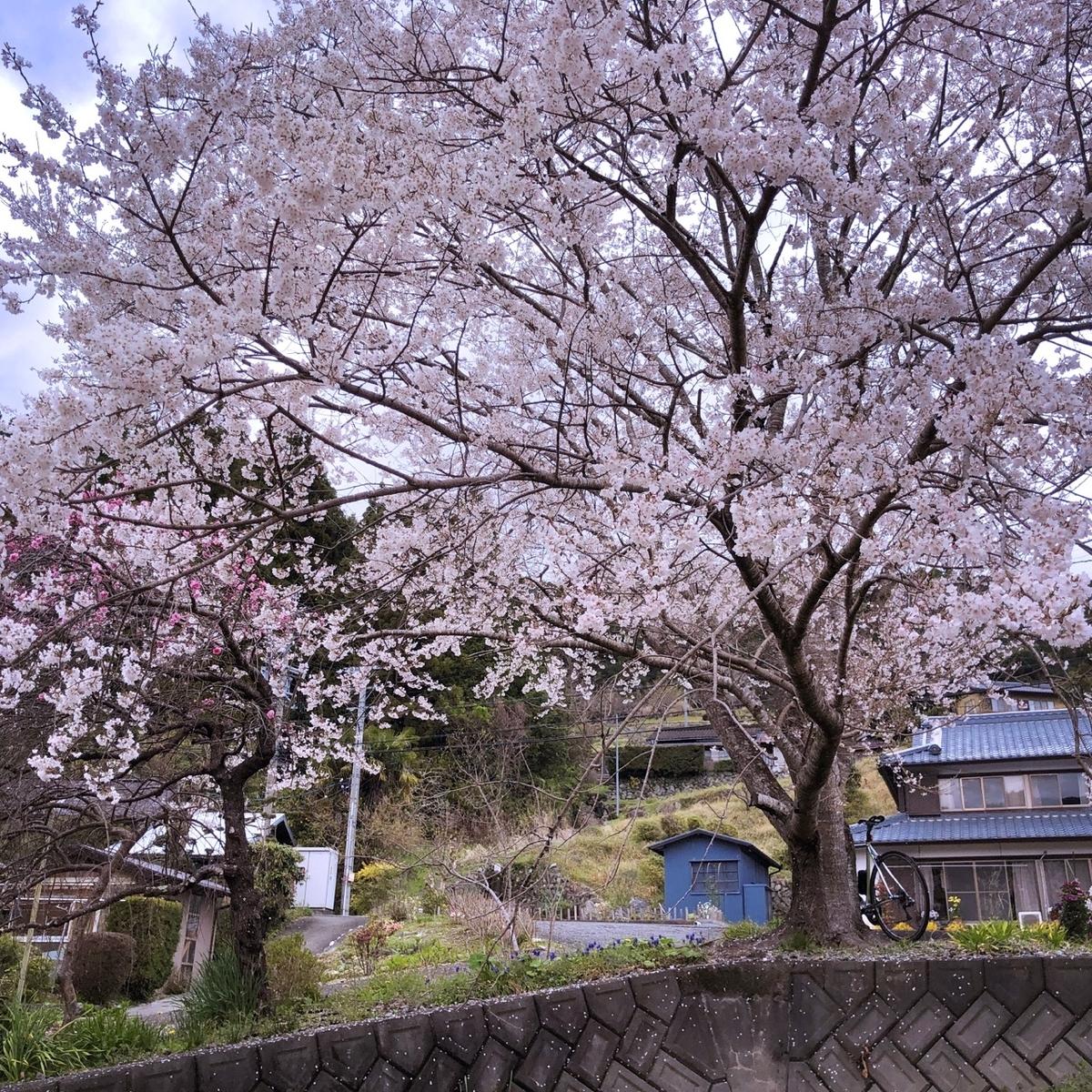 f:id:mick_kamihara:20200328120409j:plain