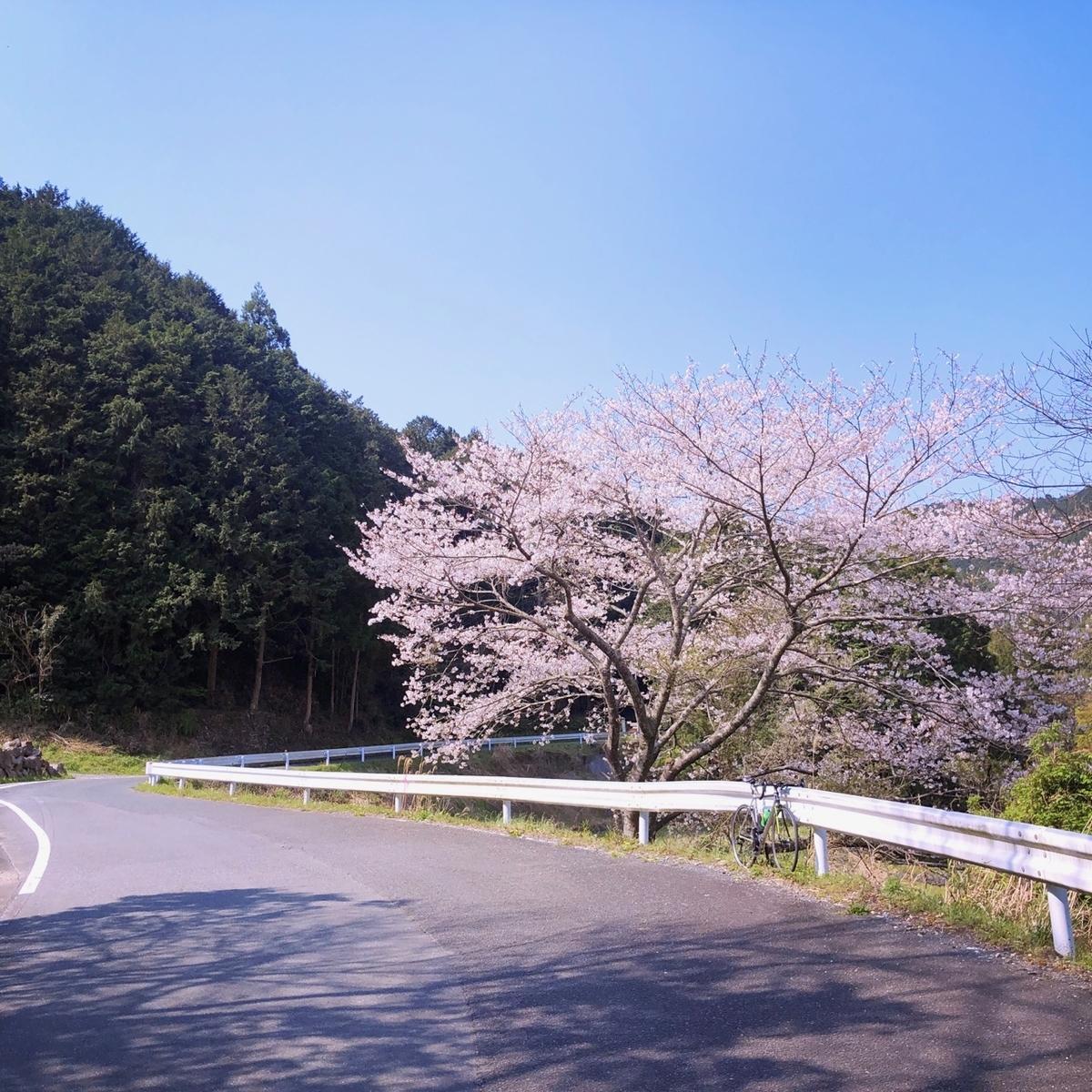 f:id:mick_kamihara:20200404094257j:plain