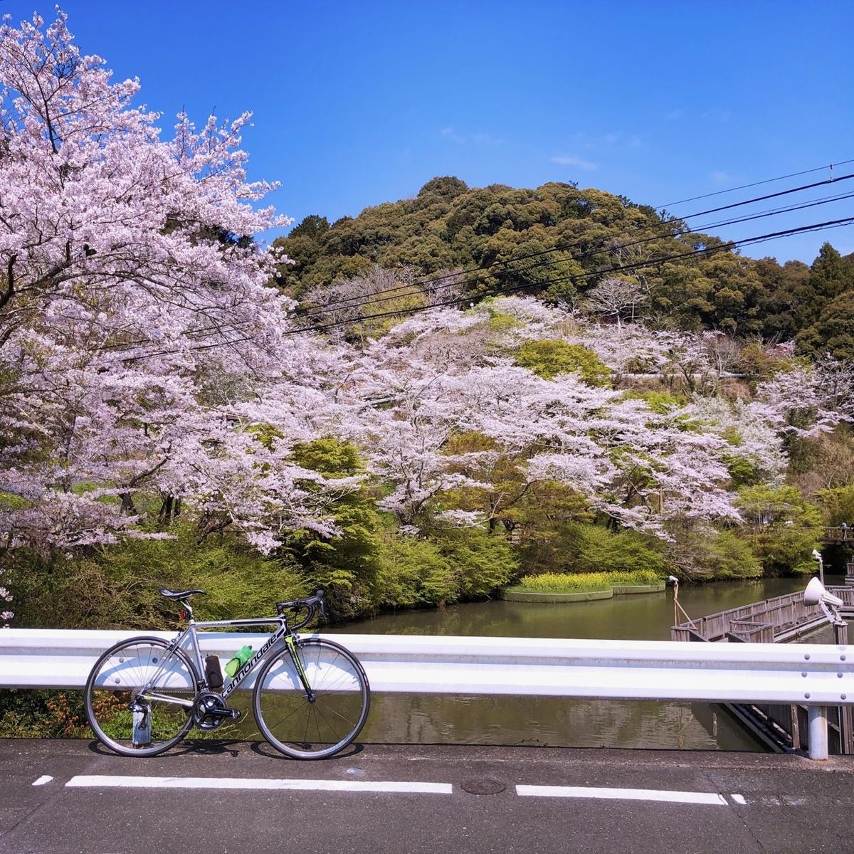 f:id:mick_kamihara:20200404095140j:plain