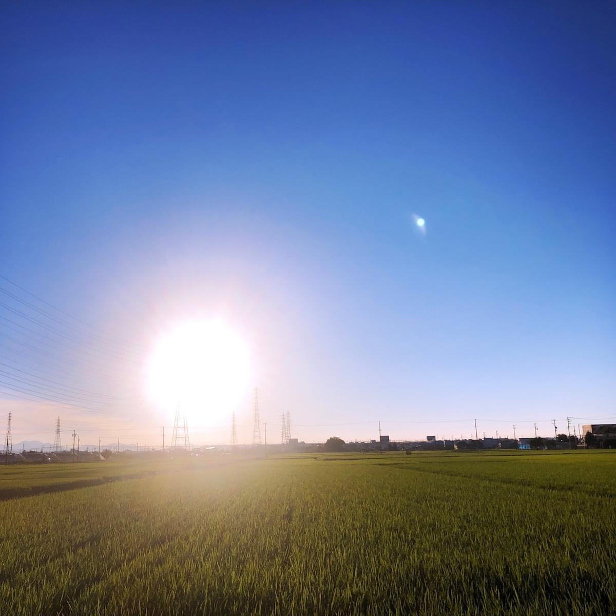 f:id:mick_kamihara:20200816055031j:plain