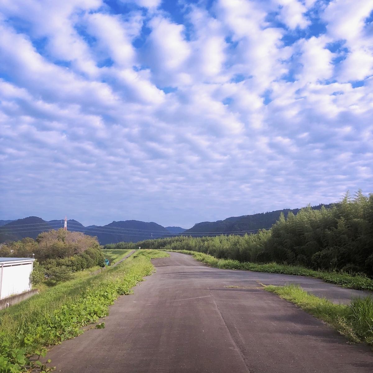 f:id:mick_kamihara:20200922072956j:plain