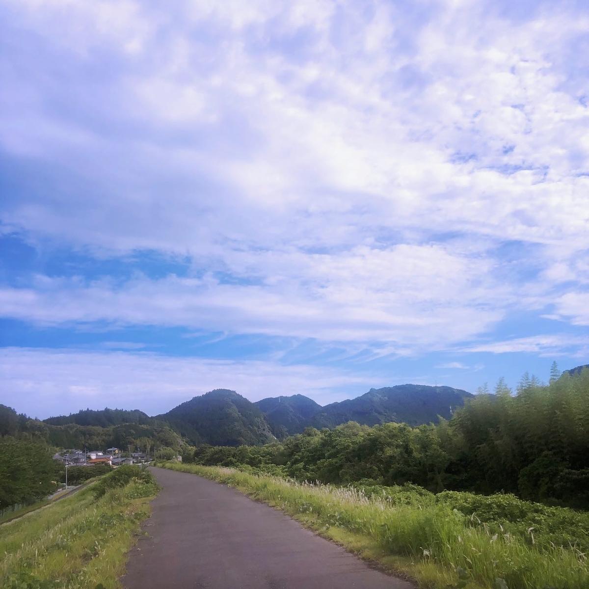 f:id:mick_kamihara:20210605071400j:plain
