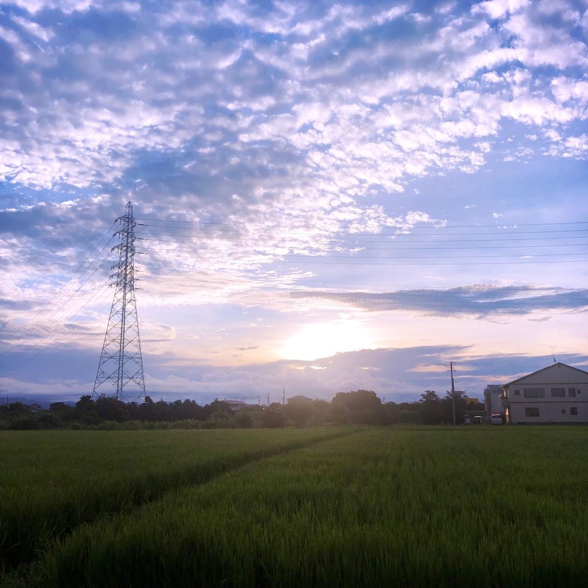 f:id:mick_kamihara:20210822054118j:plain