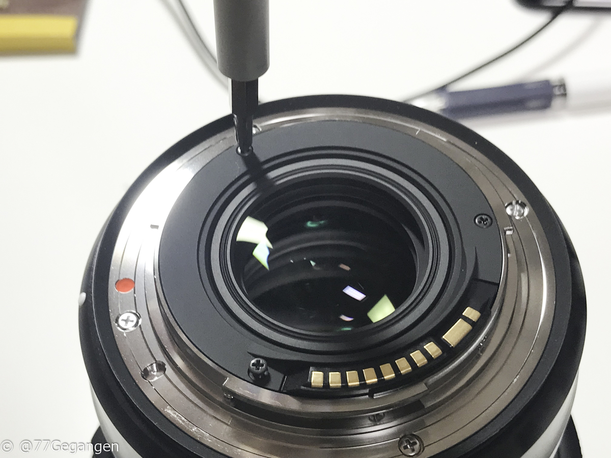 f:id:microbiologist:20191027203845j:plain