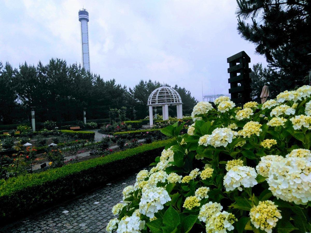 八景島 丘の広場