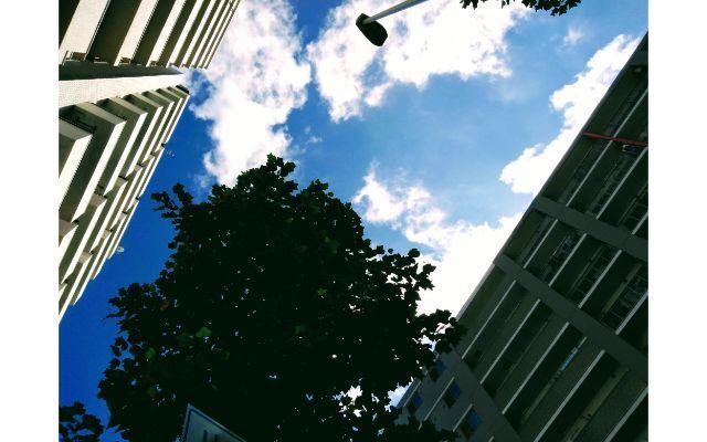 マンションに挟まれた空を見上げる