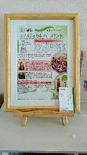 f:id:midori-miamoto:20170225234511j:image