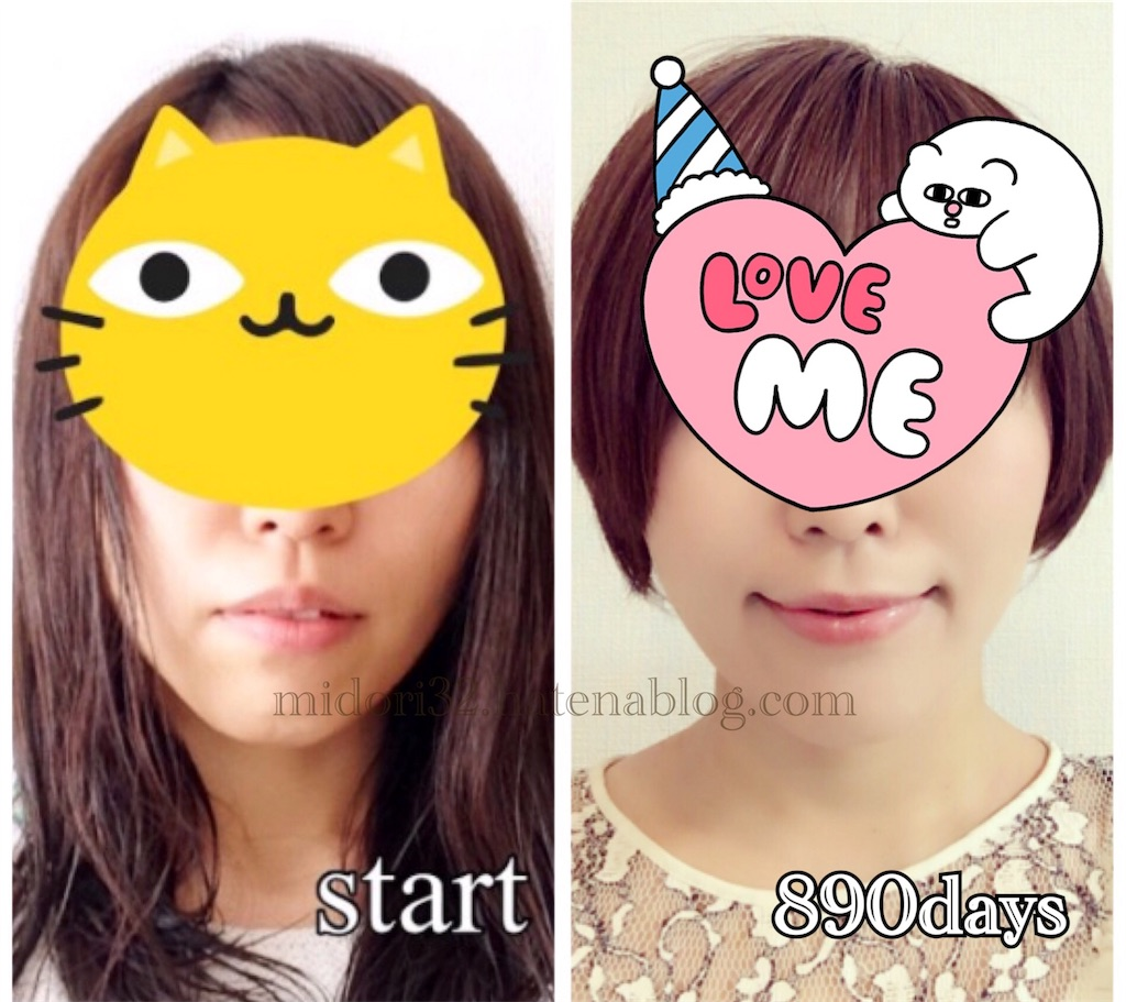 f:id:midori32:20170627114005j:plain