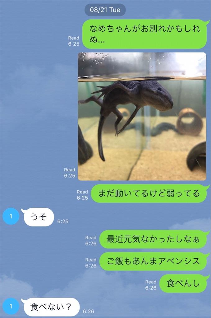 f:id:midori32:20180829162249j:plain