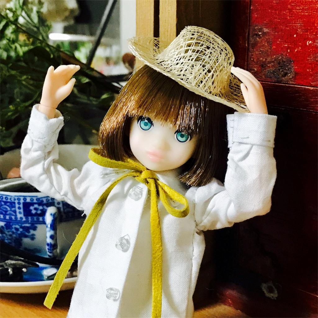 f:id:midori_0203:20170512094044j:image