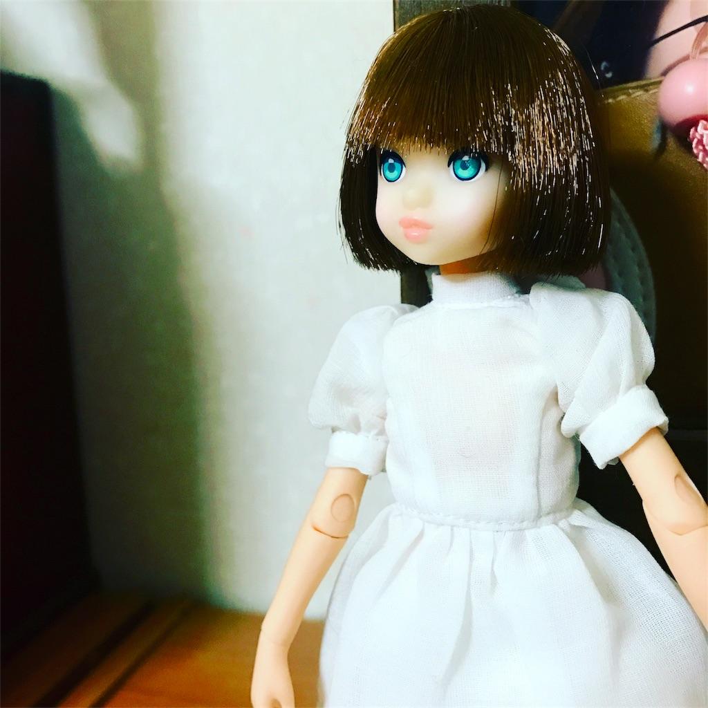 f:id:midori_0203:20170626195205j:image