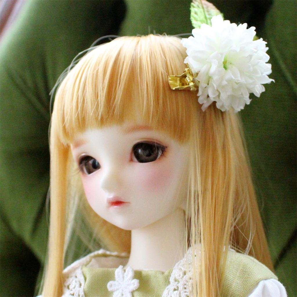 f:id:midori_0203:20170703201927j:image