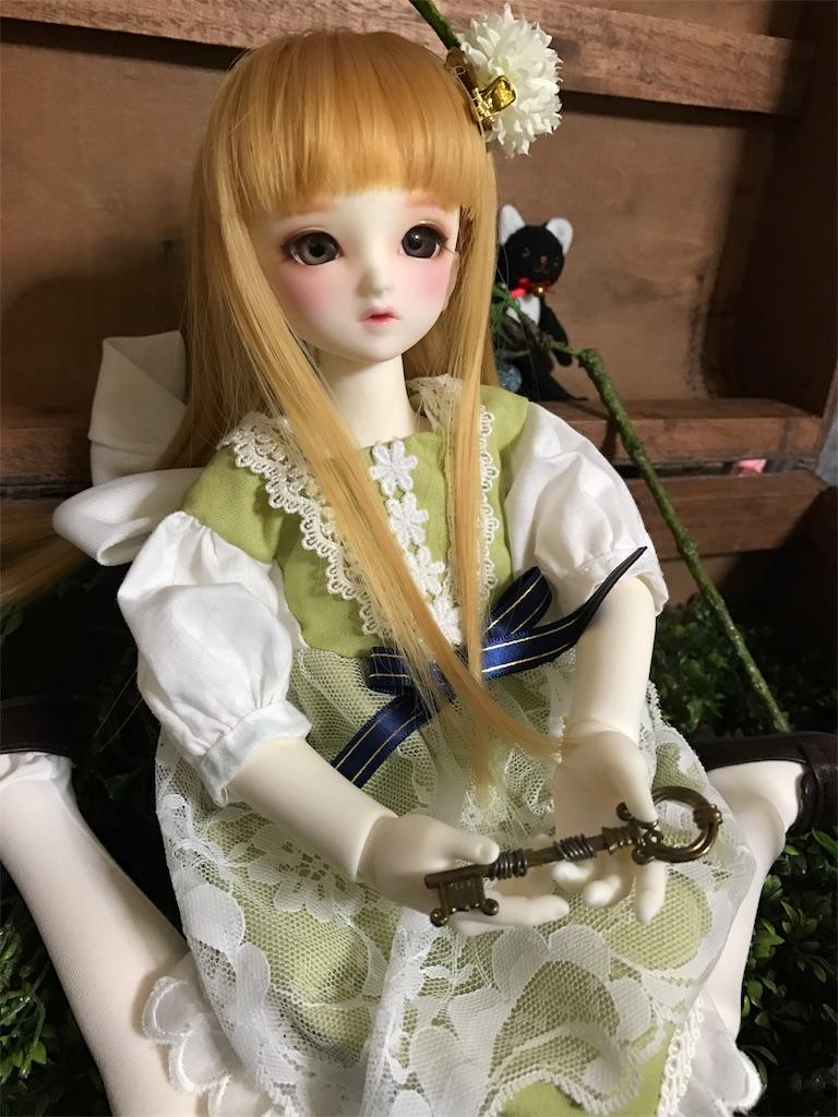 f:id:midori_0203:20170703202847j:image