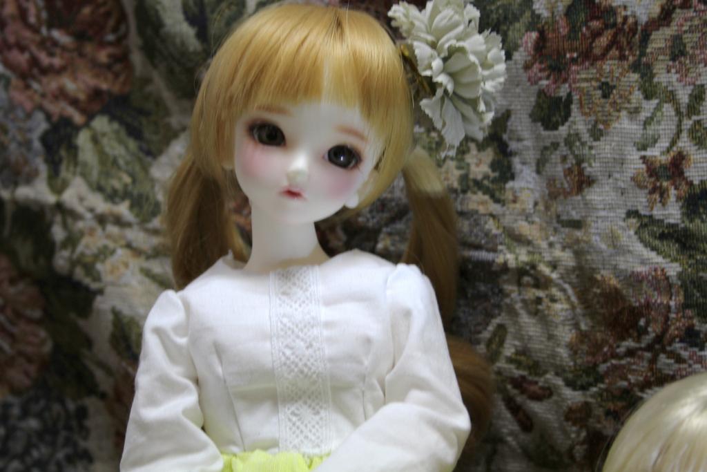f:id:midori_0203:20170920170718j:plain