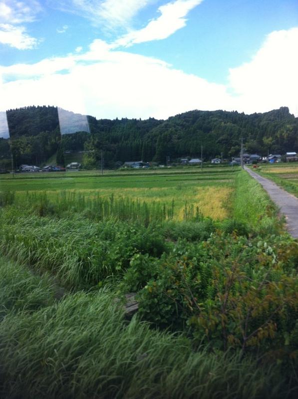 f:id:midori_niki:20120904182956j:image:w360