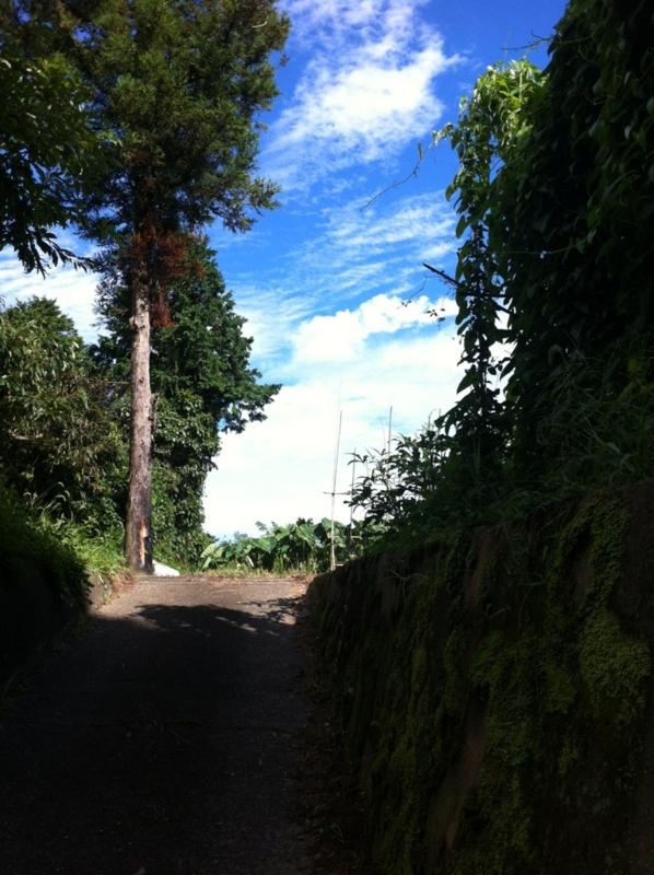 f:id:midori_niki:20120904185351j:image:w360