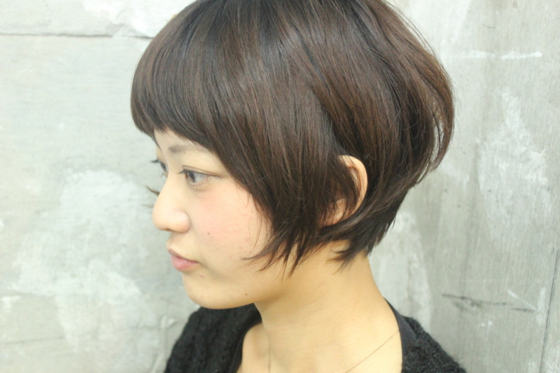 f:id:midori_niki:20121124211418j:image:w360