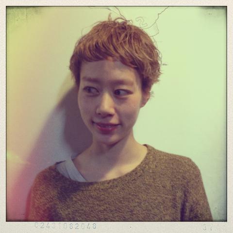 f:id:midori_niki:20130210204704p:image:w360