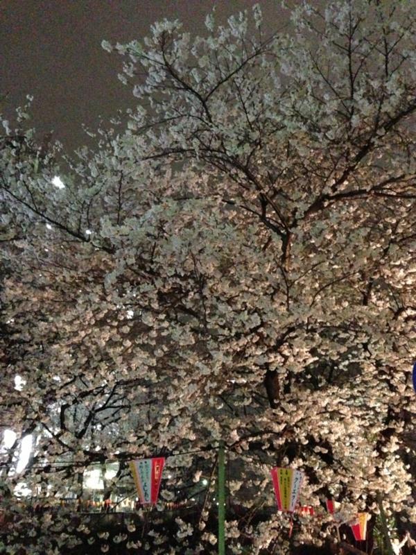 f:id:midori_niki:20130324121750j:image:w360