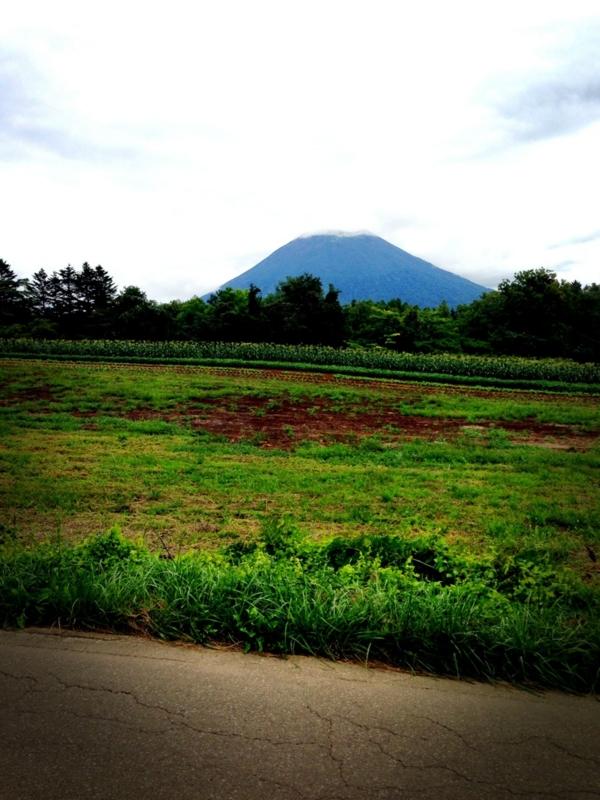 f:id:midori_niki:20130915192853j:image:w360