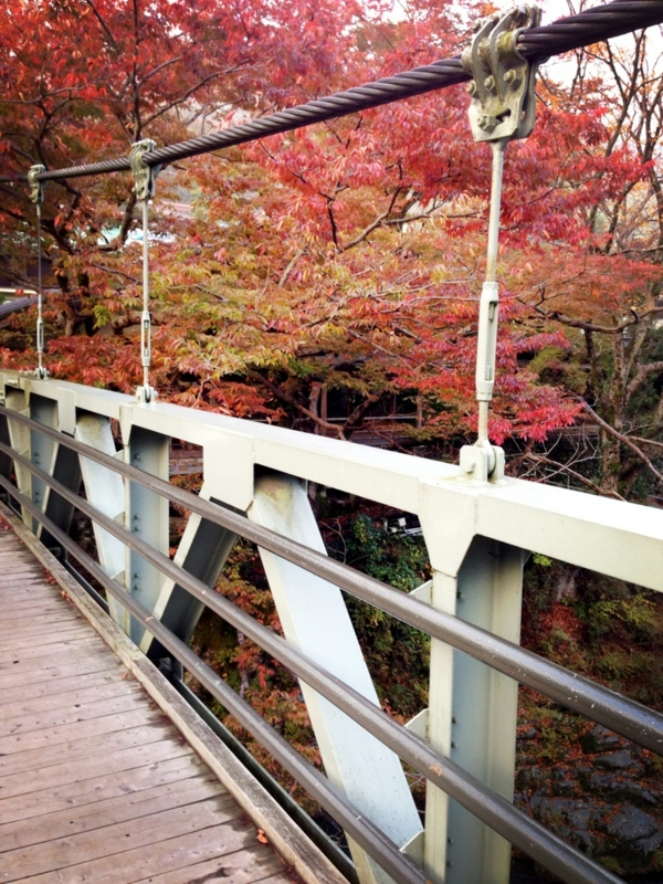 f:id:midori_niki:20131113112834j:image:w360