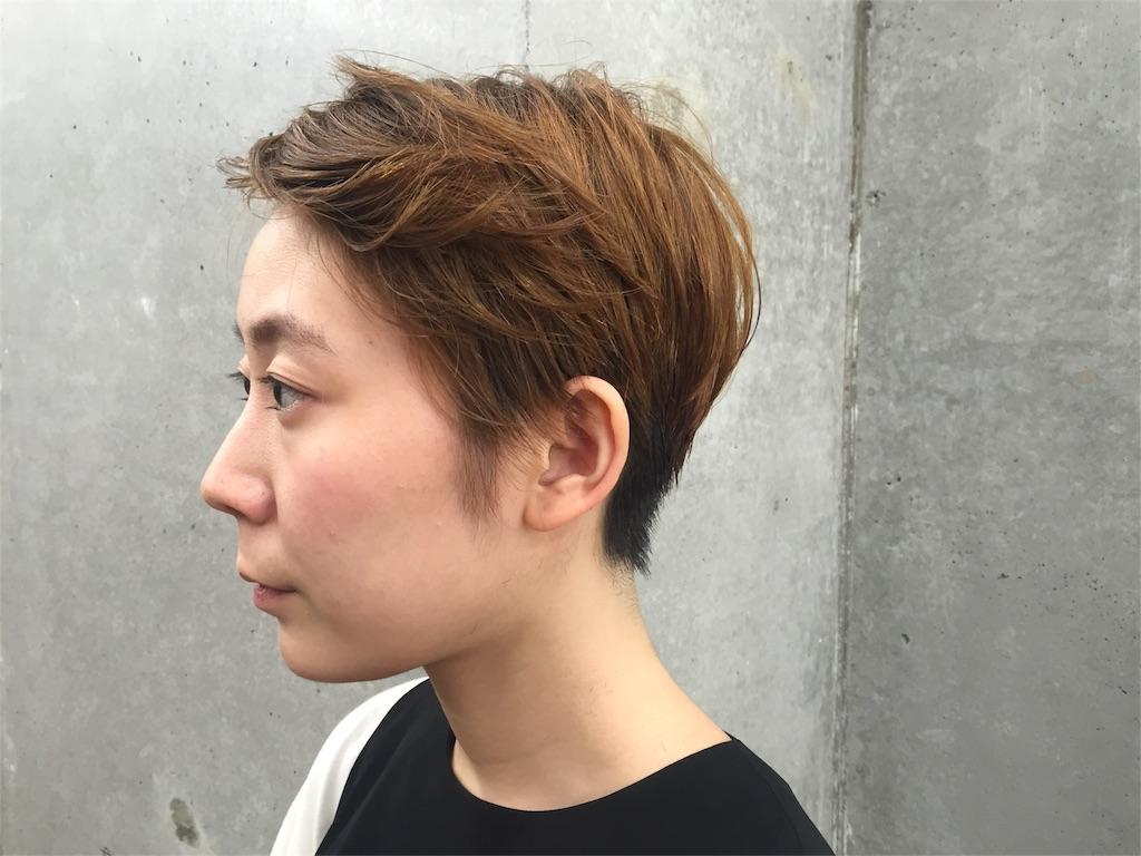 f:id:midori_niki:20160823192310j:image