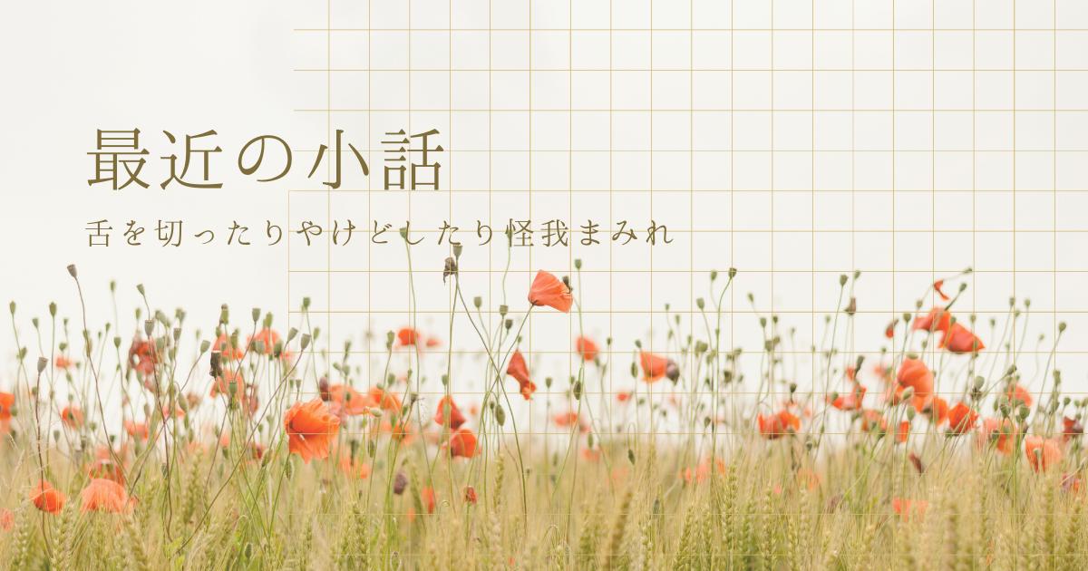 f:id:midorikaze_9375:20211017173654p:plain
