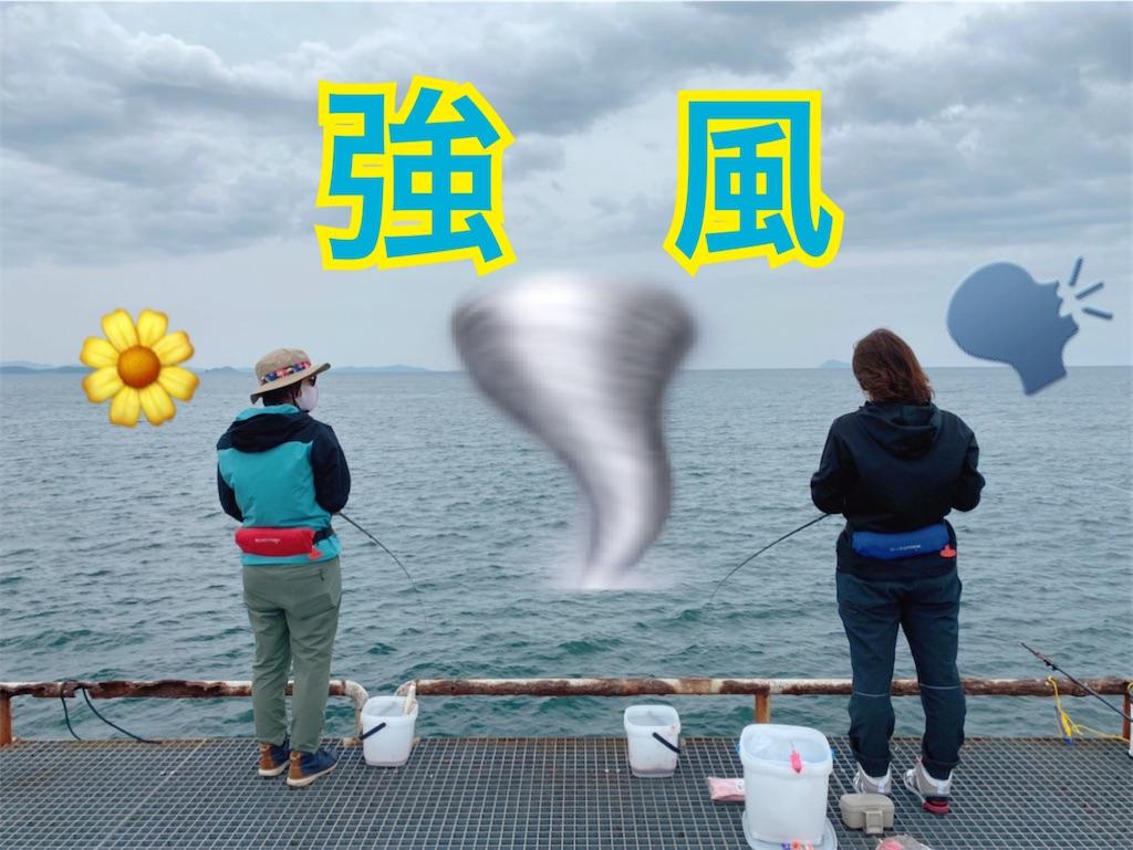 f:id:midorisuke:20210512151028j:image