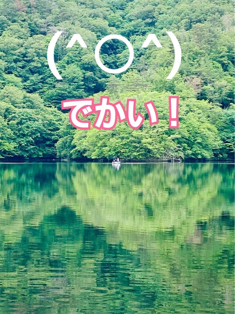 f:id:midorisuke:20210613091042j:image