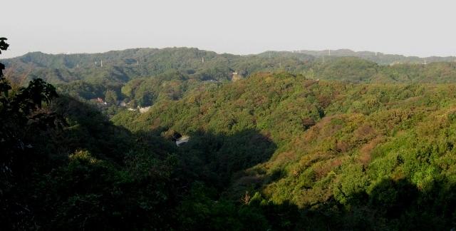 鎌倉アルプス 天園方面 衣張山から