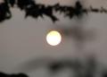 月みたいな午後の太陽
