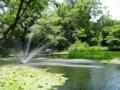 北海道大学の池
