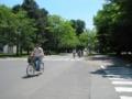 北大構内は自転車は移動