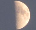 上弦の月・弓張月
